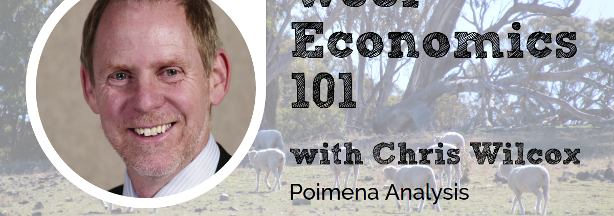 Chris Wilcox Wool Economics 101 Wool Academy Podcast