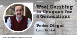 Pedro Otegui Lanas Trinidad at the Wool Academy Podcast