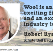 Robert Ryan Wool Academy Podcast 029