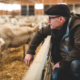 Gerhard Schoppel from Schoppel Wolle at Wool Academy Podcast
