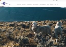 Fuhrmann Website